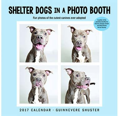 Shelter Dogs Photo Booth 2017 Wall