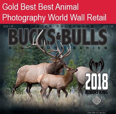 Bucks and Bulls 382 x 373